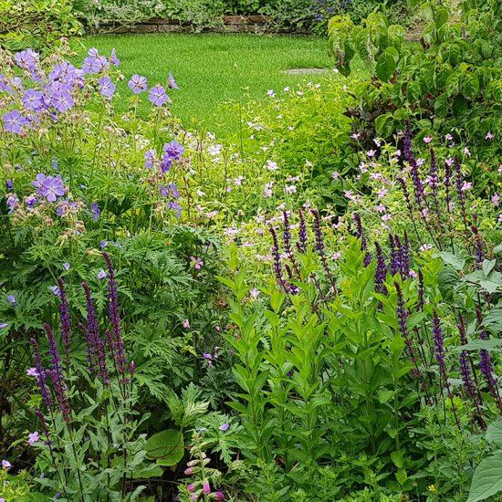 paulo-houben-tuin-hovenier-energetisch-feel-good-rust-natuur-heukelum-asperen-oosterwijk-leuven-meerkerk